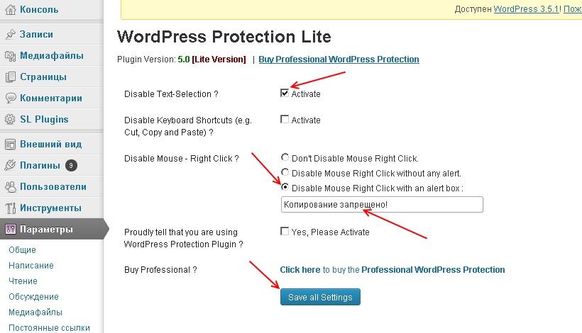 Плагиат и как с ним бороться? Плагин WordPress Protection